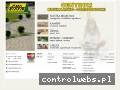 Screenshot strony www.alfasklady.com.pl