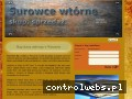 Screenshot strony www.skupsprzedazmetali.waw.pl