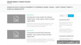 BlueBeaver.pl - pozycjonowanie stron w internecie