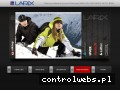 Screenshot strony larix.com.pl