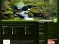 Screenshot strony naturalny.biz