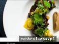 Screenshot strony www.aruana.pl