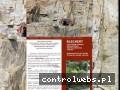 Screenshot strony www.blechert.pl