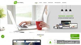 Control - Projektowanie stron, pozycjonowanie, hosting