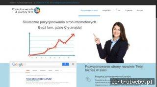 Agencja interaktywna pozycjonowanie-audytseo.pl