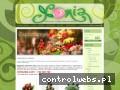 Screenshot strony kwiaciarniasonia.com