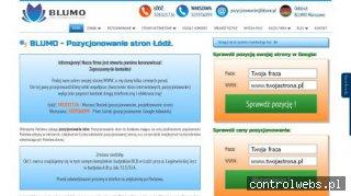 Blumo Łódź - pozycjonowanie stron internetowych