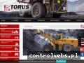 Screenshot strony www.torus.com.pl