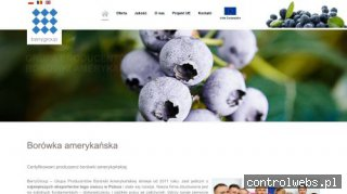 www.berrygroup.pl