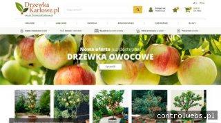 DrzewkaKarlowe.pl - duży wybór drzewek karłowych!