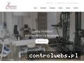 Screenshot strony www.fizjomotus.pl