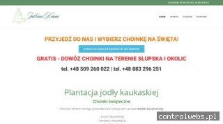 Jodłowa Kraina - choinki-swiateczne.pl