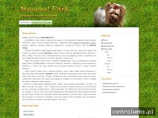Mummel Park Hodowla Yorkshire Terrier