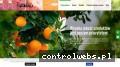 fruitsvegetablesgroup.eu