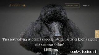 Strzyżenie psów Gdańsk - ambernova.pl
