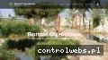 Screenshot strony www.bonsaiogrodowe.pl