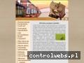 Wycena nieruchomości, agenci i pośrednicy nieruchomości