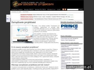 Zarządzanie Projektami, Project Management