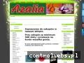 Azalia- artykuły dekoracyjne