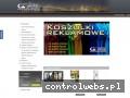 Screenshot strony www.reklama100.pl