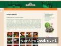 Screenshot strony kasyno-mazury.pl