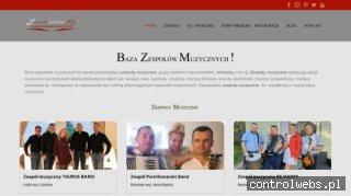 Agencja Profesjonalnych Zespołów Muzycznych - Mirex